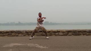 Ваджа Пісню Тум Хо | Історія Ненависті 3 Кіно | Танець ЛК Акаш Бхагат | В Чандігарх Сукна Lех 2016