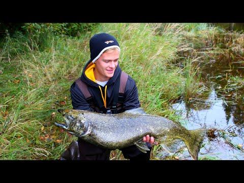 KING Salmon Fishing- Lake Michigan Wisconsin