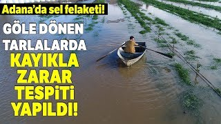 Şiddetli Yağış Sonrası Tarlalar Sular Altında Kaldı...