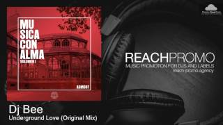 ASM097 Dj Bee Underground Love Original Mix