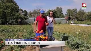 Интересные факты о Беларуси. Белорусы растят гигантские помидоры  [БЕЛАРУСЬ 4| Могилев]
