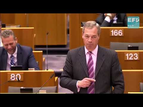Brexit is the first brick out of the wall - Nigel Farage MEP