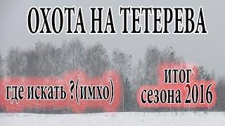 Зимняя охота на тетерева с подхода