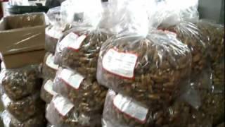 Pecans Going Global - Berdoll Pecan Farm