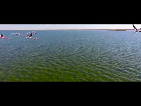 Aral Sea - Аральское море