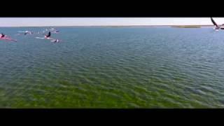 Aral Sea - Аральское море(Откройте видео на весь экран, сделайте звук погромче. И просто почувствуйте ту атмосферу катастрофы..., 2016-10-28T20:43:14.000Z)