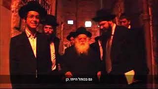 הרב חיים קנייבסקי אומר פסקי הלכה מרתקים ומחודשים - הגעתי בין כך לירושלים לבקר את הרב אלישיב לכן באתי