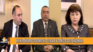Азербайджан способствует решению глобальных проблем с продовольствием
