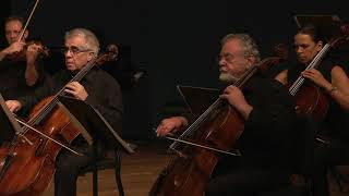 Fantasy for strings - Dawn (Shahar Regev)