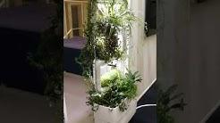 Viherseinä   elävä kasviseinä   DIY pystysuuntainen vesiviljely puutarha