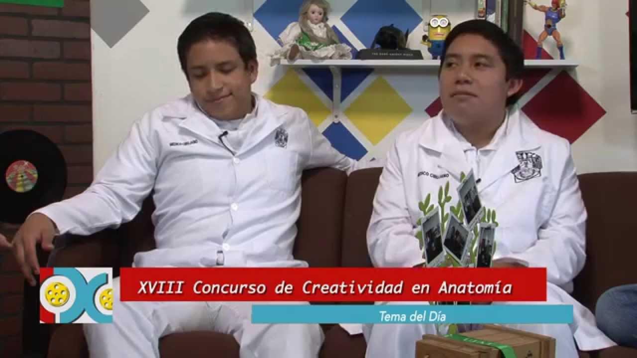 CUADRO X CUADRO CONCURSO DE CREATIVIDAD EN ANATOMIA - YouTube