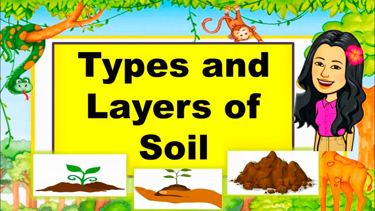 TYPES and LAYERS OF SOIL    Science Lesson For Kids