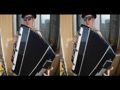 Musician 3D !Guitars And Accordion ! 3D VIDEO