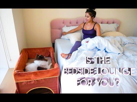 Is Petique Bedside Lounge Pet Bed for