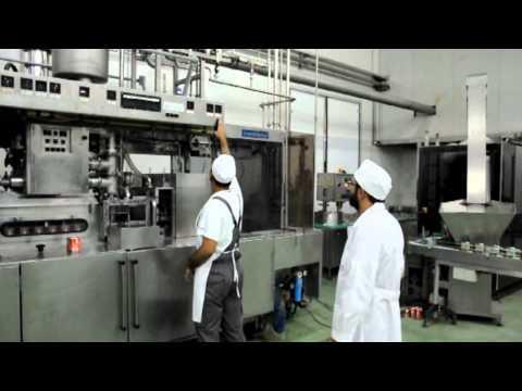 ATI A.E. Βιομηχανία επεξεργασίας & τυποποίησης τροφίμων - Λαζαρίνα Καρδίτσας - Ελλάς