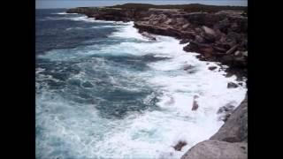 Strange Wildlife And Beautiful Beaches In Sydney Australia