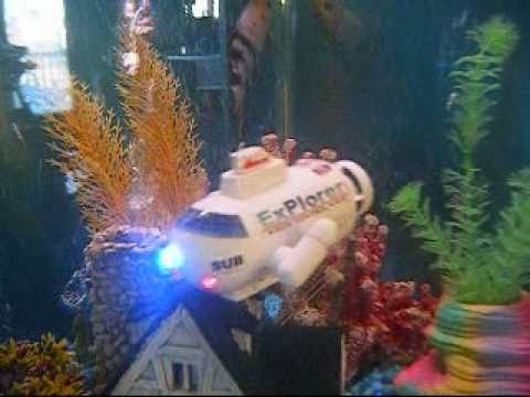 Remote control submarine underwater inside a fish tank