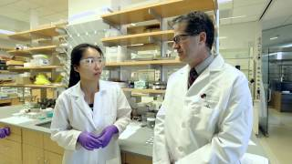 Institute for Molecular Engineering, University of Chicago - A New Breed of Research Environment