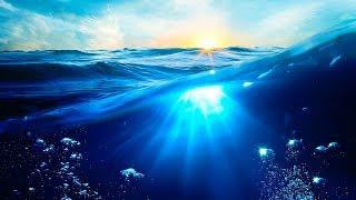 Rüzgârsız ve Kıyısız Bir Deniz