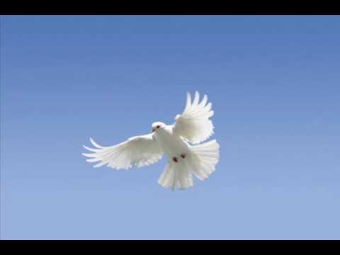 Duchu Świety Ogarnij Mnie