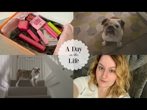 Weight Gain, Jeffree Star & Honesty  |  A Day in the Life thumbnail