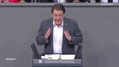 Stephan Brandner (AfD) zur Klimaschutz-Finanzierung