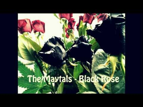 The Maytals - Black Rose