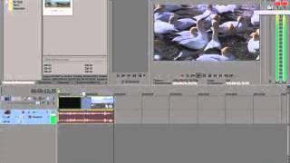 Как из Sony Vegas убрать звук из видео!(Надеюсь помог)), 2013-10-28T16:37:19.000Z)