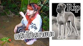 หมาตาย (หมายักษ์ สคูบี้ดู) ด้วยรักและอาลัย พี่กุ๊กกุ๊กเสียใจมาก | PandaKookkook
