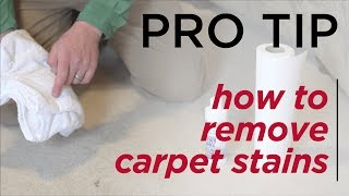 How to Remove Carpet Stains - BBB Pro Tiips