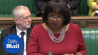 Diane Abbott: Morale of junior doctors is at an all time low - Daily Mail