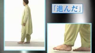 DVDブック『実践 ブッダの瞑想法』(ヴィパッサナー瞑想のやり方)
