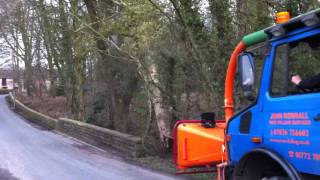 Using unimog to pull down hung up wind blown sycamore tree