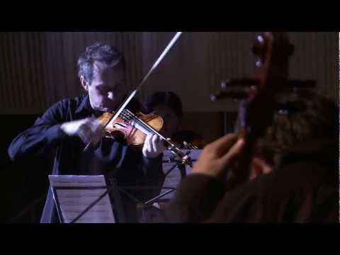 Paganini/Tognetti - Caprice on Caprices (short clip)