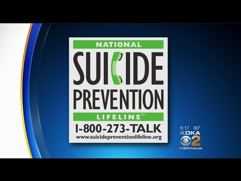 Suicide Prevention Experts Troubled By Possible Copycat Suicides After Celebrity Deaths