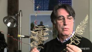 Frank Spinelli: From Human Nature to Mother Nature