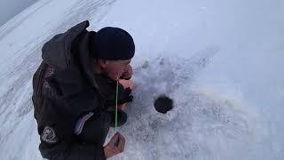 Рыбалка на окуня в дельте Селенги Бурятия