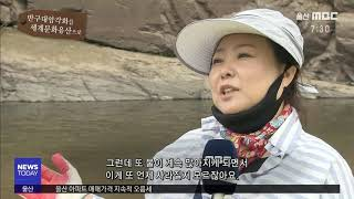 [반구대 암각화를 세계문화유산으로] 릴레이 영상 김금미…