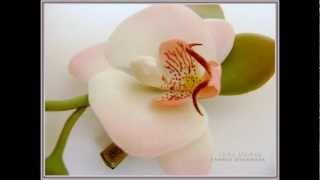 Орхидея Фаленопсис из холодного фарфора Ивашковой Г.wmv