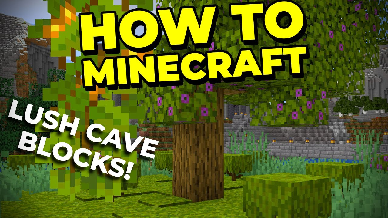 How To Get Lush Cave Blocks in 1.17 - How To Minecraft #76