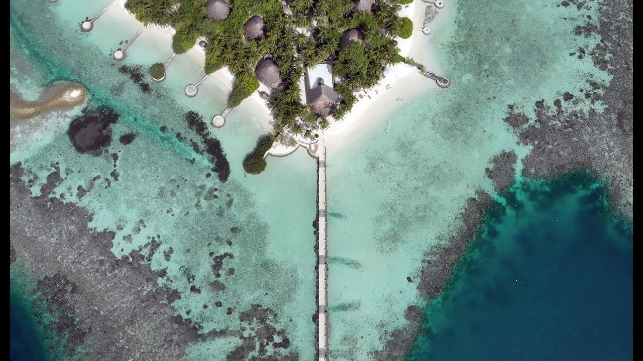 venta barata del reino unido nuevo estilo y lujo duradero en uso Nika Island Resort & Spa - The Maldives that used to be - YouTube