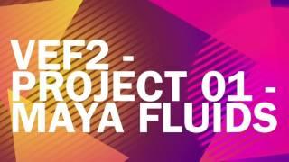 Salazar Luis Project1 VEF2 L 1605 Final Edited Version
