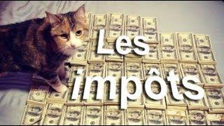 LES IMPÔTS - PAROLE DE CHAT