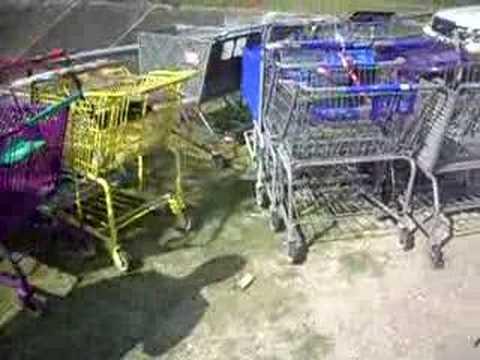 Allen and David's shopping cart dealership feat John Lomax
