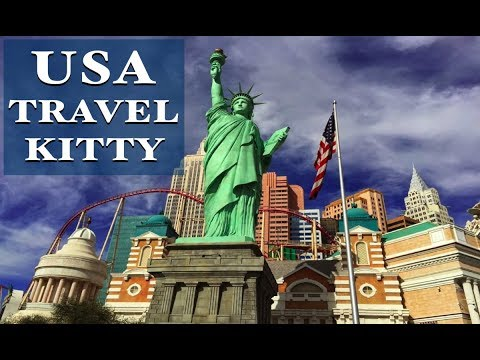USA Travel Kitty