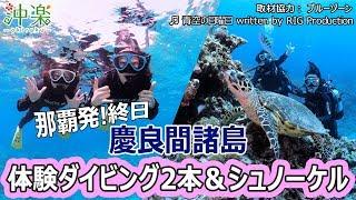 https://bit.ly/2IgSlrZ 沖縄ダイビング・シュノーケリング予約サイト【...