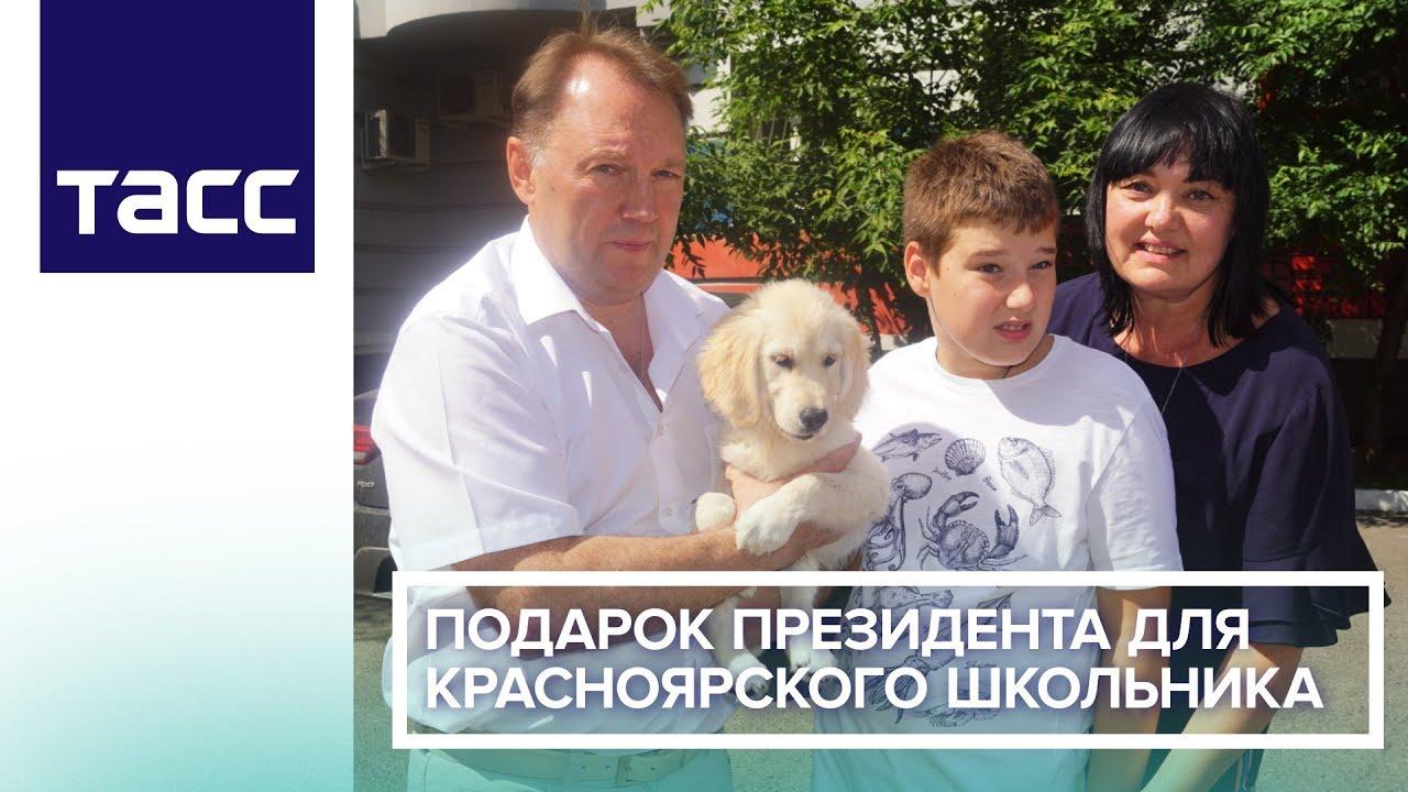 Школьник из Красноярска получил щенка в подарок от Путина