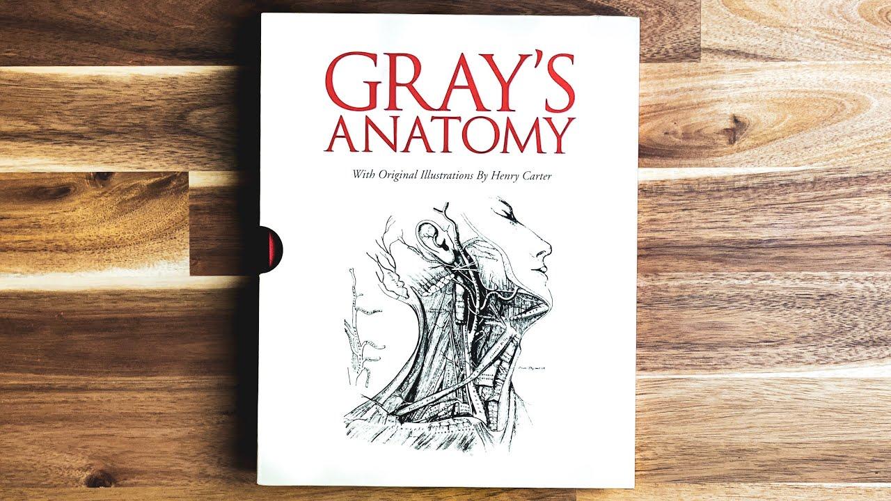 Download The Dark Story Behind Gray's Anatomy