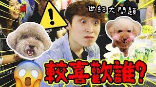 【世紀大問題】波友問我較喜歡Muffin還是Brownie😱!?70萬訂閱+生日送禮物派對🎁(中字)