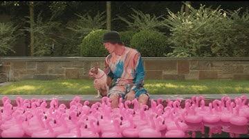 Johnny Stimson -Pink Lemonade (Official Video)